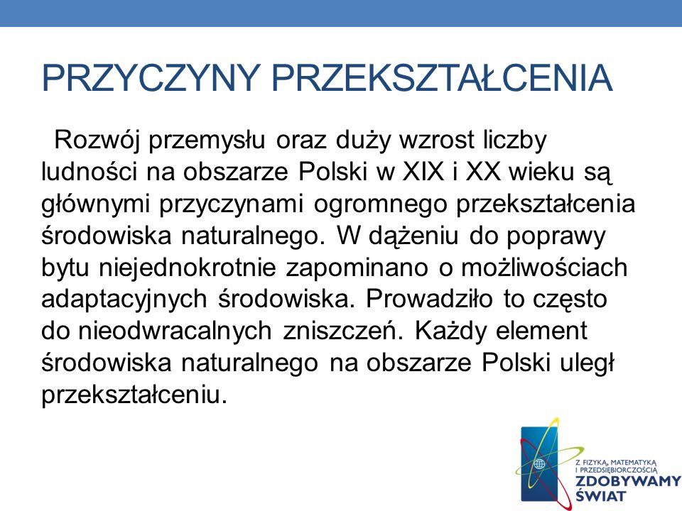 PRZYCZYNY PRZEKSZTAŁCENIA Rozwój przemysłu oraz duży wzrost liczby ludności na obszarze Polski w XIX i XX wieku są głównymi przyczynami ogromnego prze