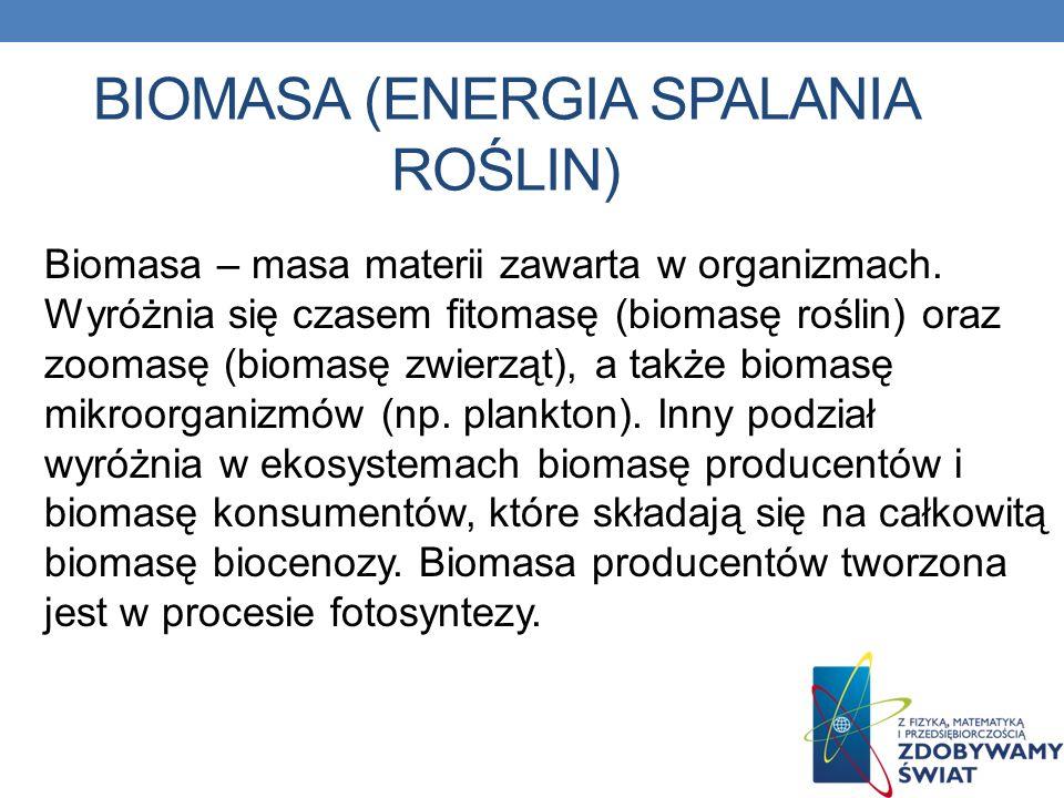 BIOMASA (ENERGIA SPALANIA ROŚLIN) Biomasa – masa materii zawarta w organizmach. Wyróżnia się czasem fitomasę (biomasę roślin) oraz zoomasę (biomasę zw