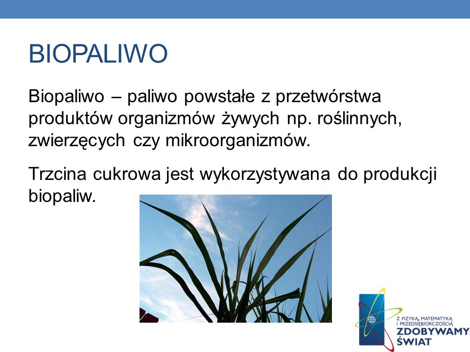 BIOPALIWO Biopaliwo – paliwo powstałe z przetwórstwa produktów organizmów żywych np. roślinnych, zwierzęcych czy mikroorganizmów. Trzcina cukrowa jest