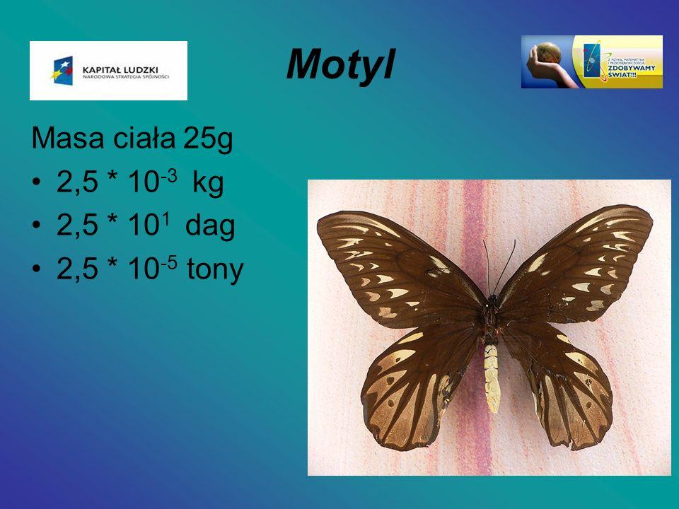 Motyl Masa ciała 25g 2,5 * 10 -3 kg 2,5 * 10 1 dag 2,5 * 10 -5 tony