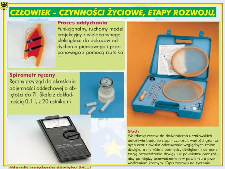 Z.Tagowski, V2009, slide 23