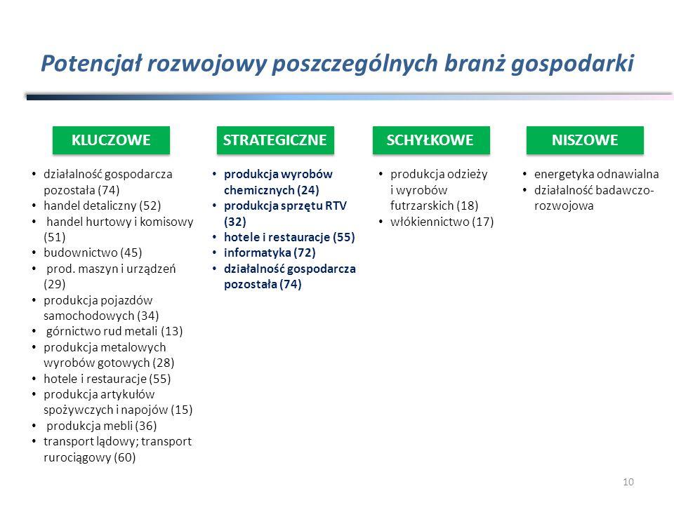 Potencjał rozwojowy poszczególnych branż gospodarki produkcja wyrobów chemicznych (24) produkcja sprzętu RTV (32) hotele i restauracje (55) informatyk