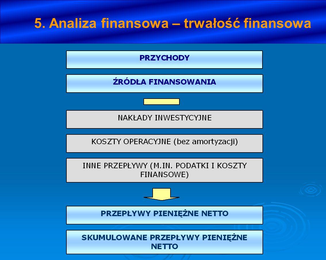 5. Analiza finansowa – trwałość finansowa