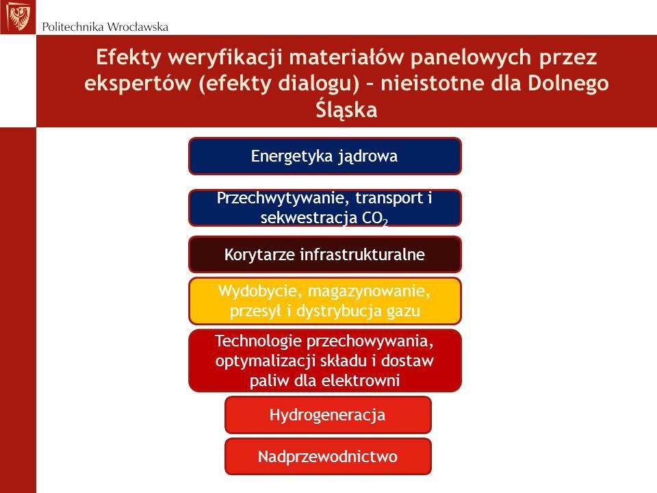 Efekty weryfikacji materiałów panelowych przez ekspertów (efekty dialogu) – nieistotne dla Dolnego Śląska Energetyka jądrowa Hydrogeneracja Przechwytywanie, transport i sekwestracja CO 2 Wydobycie, magazynowanie, przesył i dystrybucja gazu Technologie przechowywania, optymalizacji składu i dostaw paliw dla elektrowni Nadprzewodnictwo Korytarze infrastrukturalne