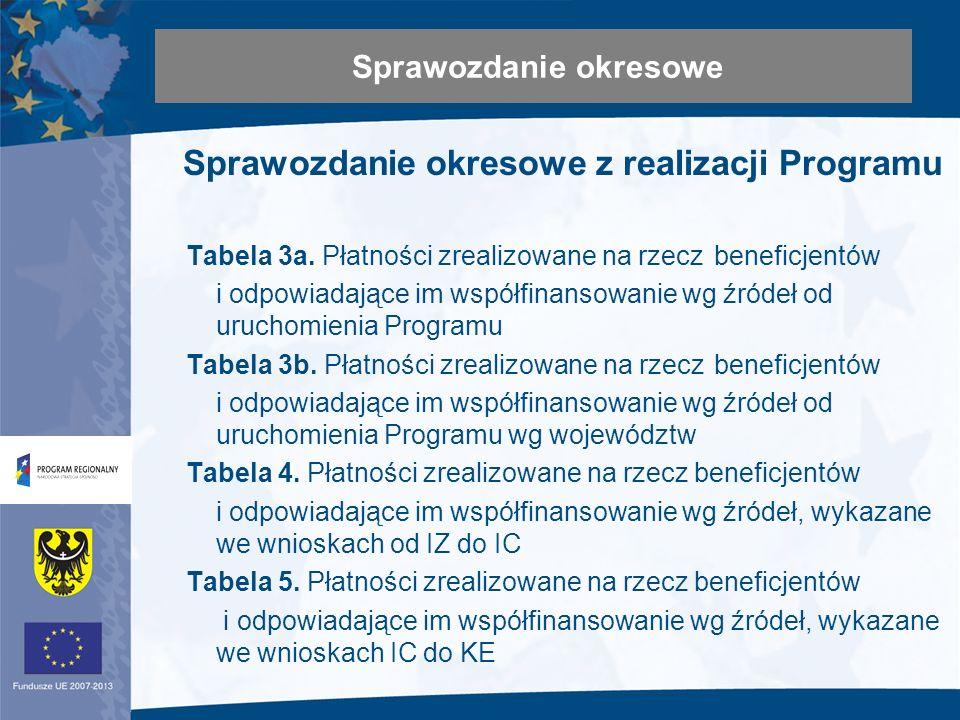Sprawozdanie okresowe z realizacji Programu Tabela 3a.