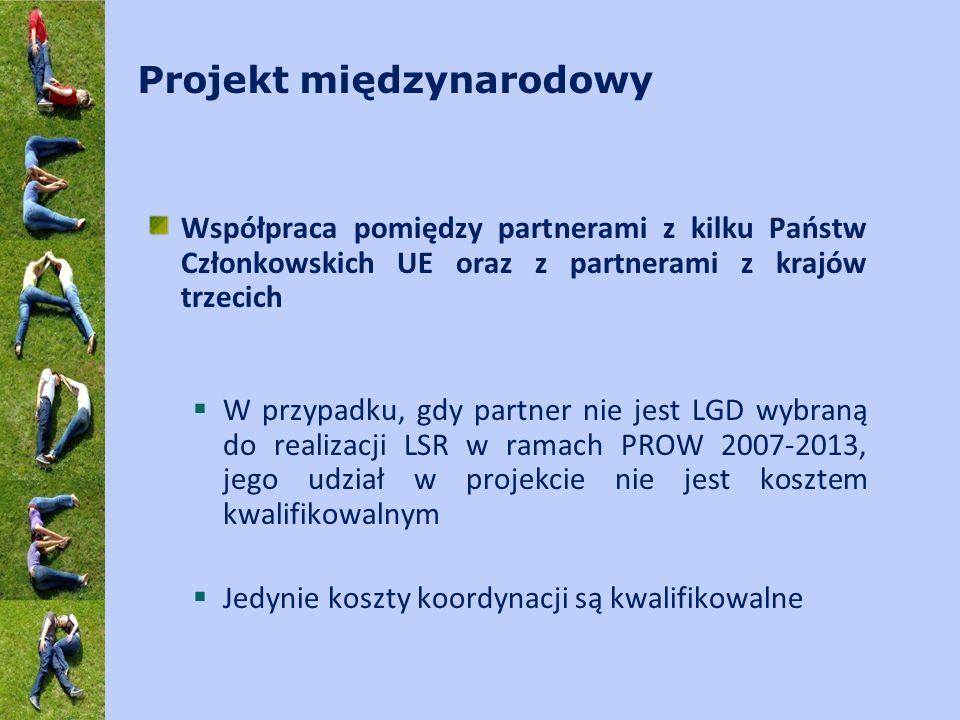 Projekt międzynarodowy Współpraca pomiędzy partnerami z kilku Państw Członkowskich UE oraz z partnerami z krajów trzecich W przypadku, gdy partner nie jest LGD wybraną do realizacji LSR w ramach PROW 2007-2013, jego udział w projekcie nie jest kosztem kwalifikowalnym Jedynie koszty koordynacji są kwalifikowalne