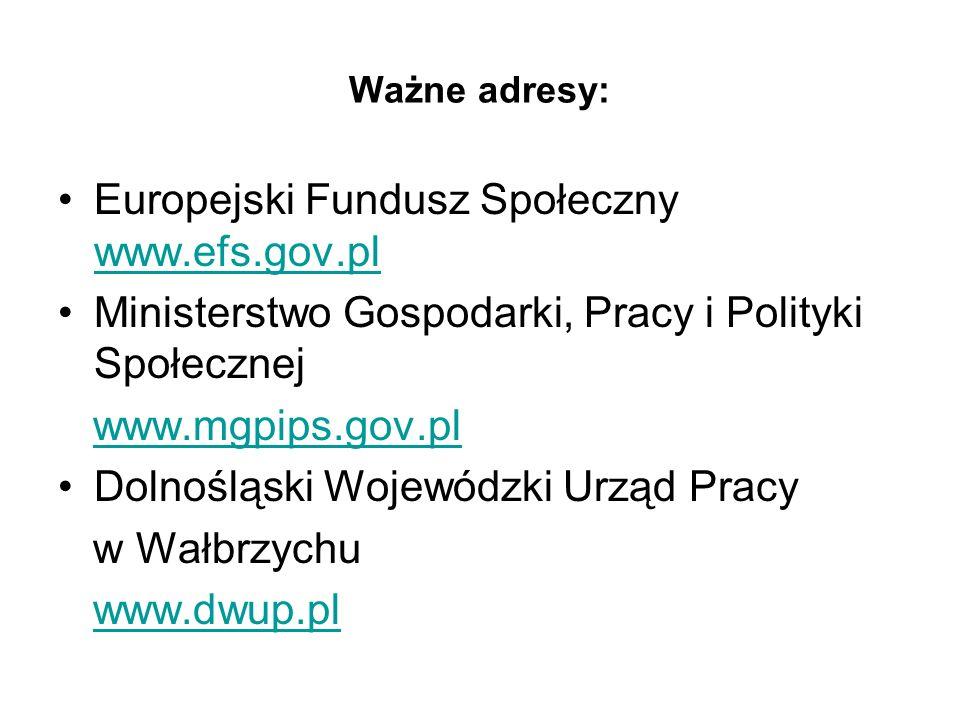Ważne adresy: Europejski Fundusz Społeczny www.efs.gov.pl www.efs.gov.pl Ministerstwo Gospodarki, Pracy i Polityki Społecznej www.mgpips.gov.pl Dolnośląski Wojewódzki Urząd Pracy w Wałbrzychu www.dwup.pl