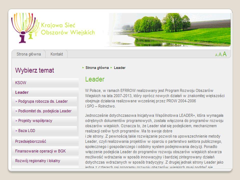 Odnowa i rozwój wsi - Zasady przyznawania, rozliczania i kontroli pomocy finansowej