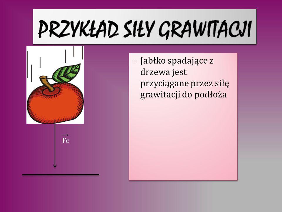Jabłko spadające z drzewa jest przyciągane przez siłę grawitacji do podłoża Fc