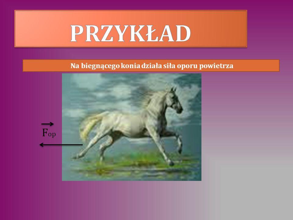 Na biegnącego konia działa siła oporu powietrza