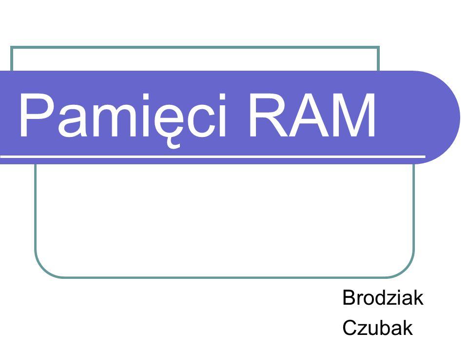Pamięci RAM Brodziak Czubak