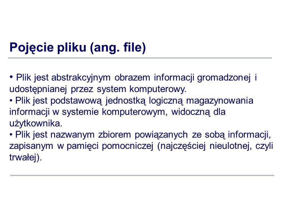 Pojęcie pliku (ang. file) Plik jest abstrakcyjnym obrazem informacji gromadzonej i udostępnianej przez system komputerowy. Plik jest podstawową jednos