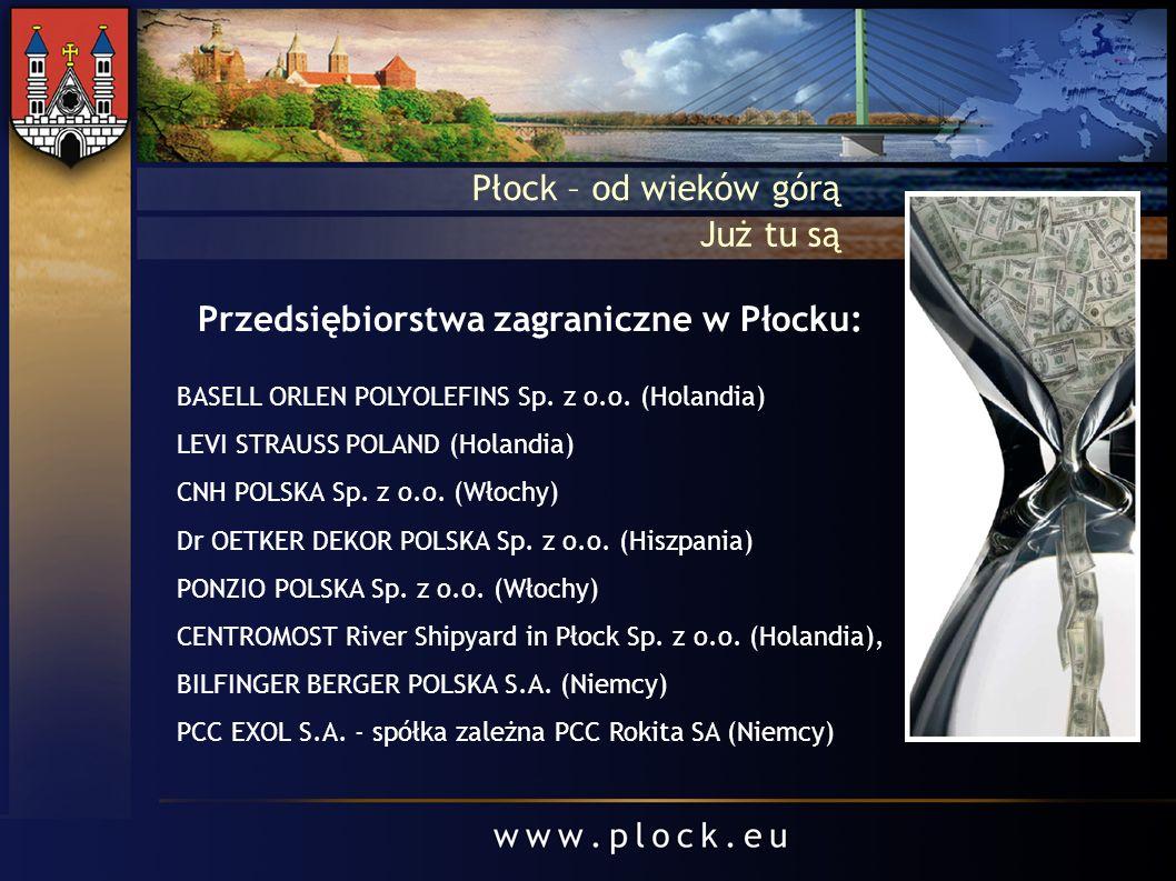 Przedsiębiorstwa zagraniczne w Płocku: BASELL ORLEN POLYOLEFINS Sp. z o.o. (Holandia) LEVI STRAUSS POLAND (Holandia) CNH POLSKA Sp. z o.o. (Włochy) Dr