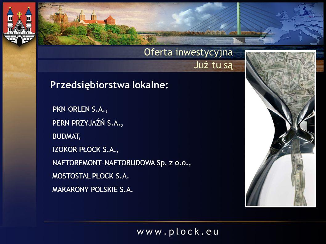 Przedsiębiorstwa lokalne: PKN ORLEN S.A., PERN PRZYJAŹŃ S.A., BUDMAT, IZOKOR PŁOCK S.A., NAFTOREMONT-NAFTOBUDOWA Sp. z o.o., MOSTOSTAL PŁOCK S.A. MAKA