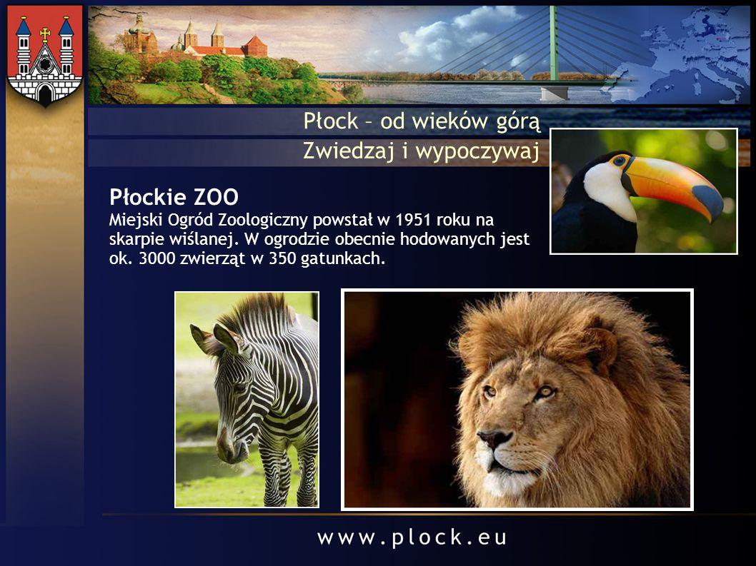 Płock – od wieków górą Zwiedzaj i wypoczywaj Płockie ZOO Miejski Ogród Zoologiczny powstał w 1951 roku na skarpie wiślanej. W ogrodzie obecnie hodowan