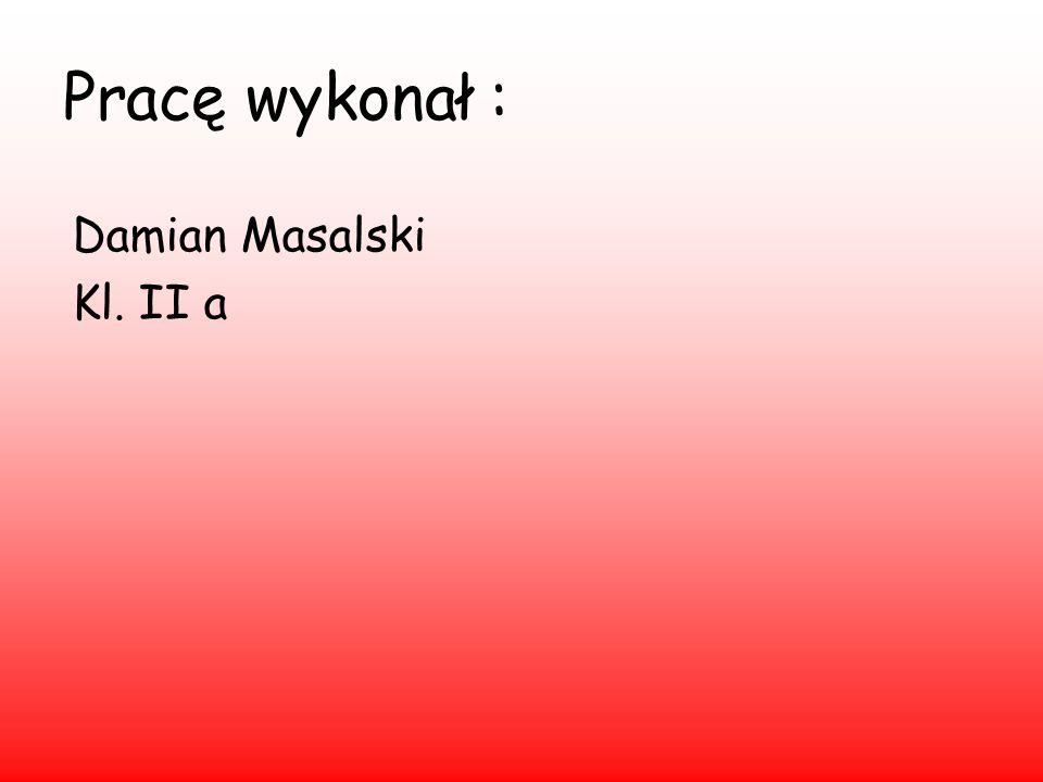 Pracę wykonał : Damian Masalski Kl. II a