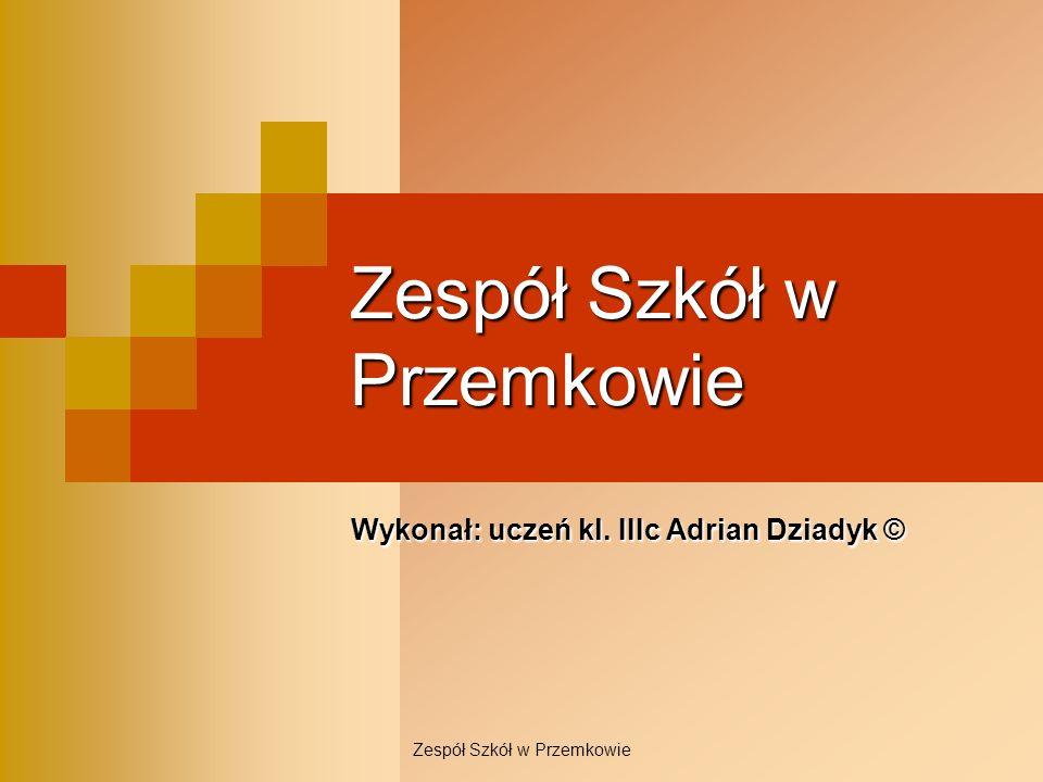 Zespół Szkół w Przemkowie Wykonał: uczeń kl. IIIc Adrian Dziadyk ©
