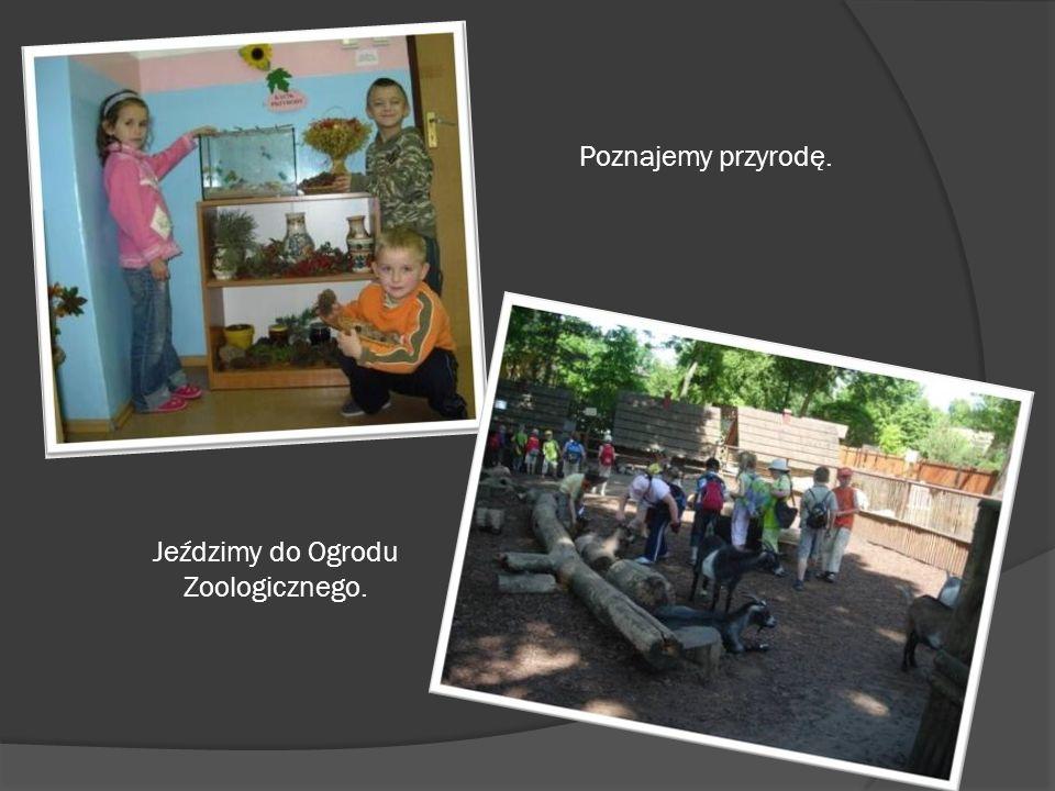 Poznajemy przyrodę. Jeździmy do Ogrodu Zoologicznego.