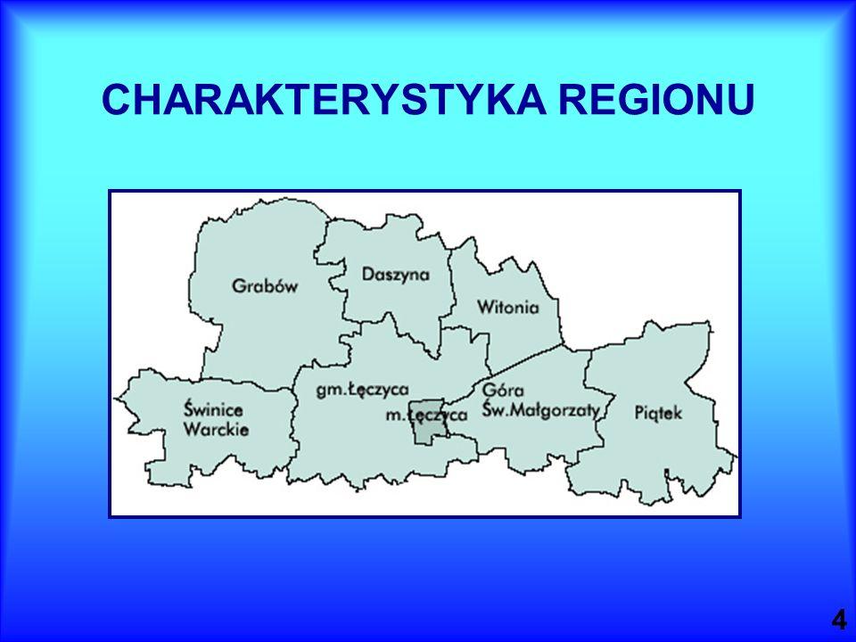 4 CHARAKTERYSTYKA REGIONU