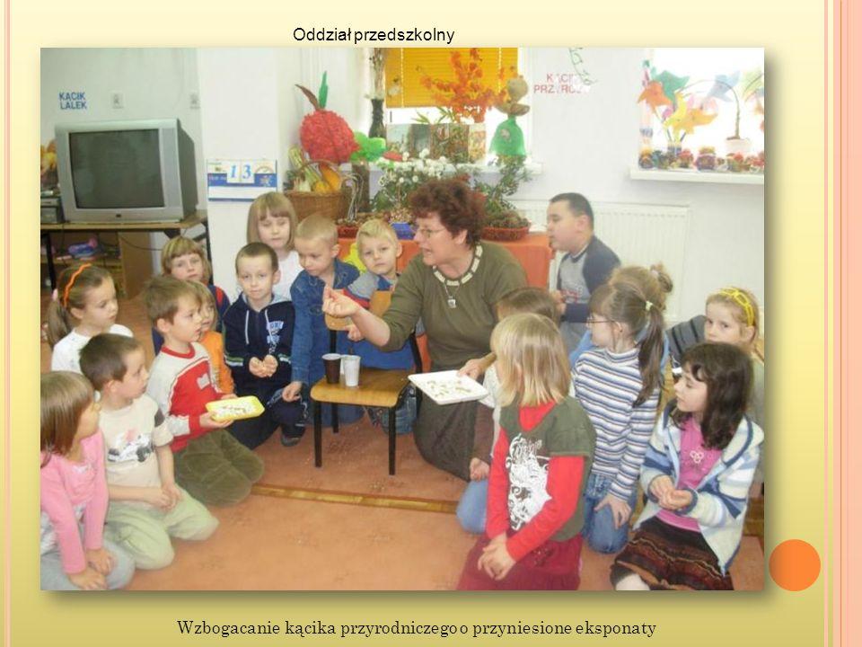 Wzbogacanie kącika przyrodniczego o przyniesione eksponaty Oddział przedszkolny
