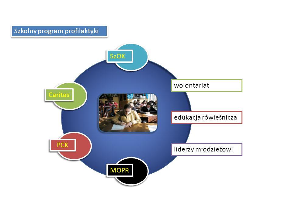 wolontariat edukacja rówieśnicza liderzy młodzieżowi Szkolny program profilaktyki