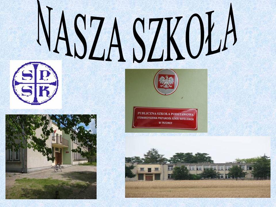 Od 1 września 2001 roku Stowarzyszenie Przyjaciół Szkół Katolickich z Częstochowy pełni funkcję organu prowadzącego szkołę, a władze samorządowe Gminy Brąszewice użyczyły budynek szkole.