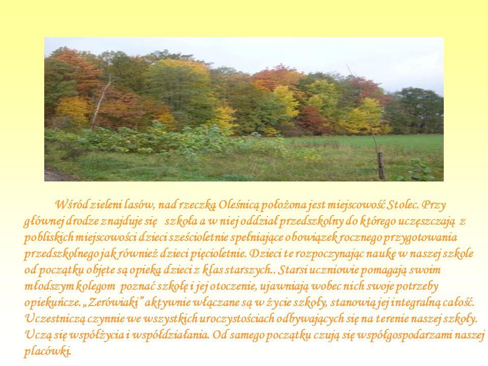 Wśród zieleni lasów, nad rzeczką Oleśnicą położona jest miejscowość Stolec.