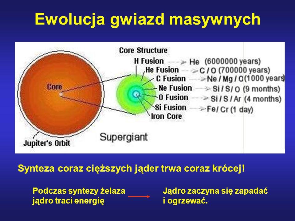 Ewolucja gwiazd masywnych Synteza coraz cięższych jąder trwa coraz krócej! Podczas syntezy żelaza jądro traci energię Jądro zaczyna się zapadać i ogrz