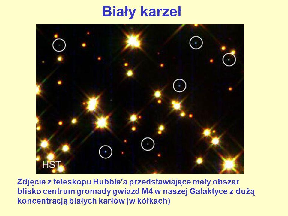 Biały karzeł Zdjęcie z teleskopu Hubblea przedstawiające mały obszar blisko centrum gromady gwiazd M4 w naszej Galaktyce z dużą koncentracją białych k