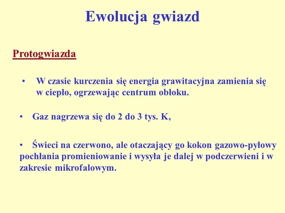 W czasie kurczenia się energia grawitacyjna zamienia się w ciepło, ogrzewając centrum obłoku. Gaz nagrzewa się do 2 do 3 tys. K, Świeci na czerwono, a