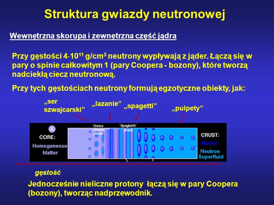 Struktura gwiazdy neutronowej Wewnętrzna skorupa i zewnętrzna część jądra Przy gęstości 4 10 11 g/cm 3 neutrony wypływają z jąder.