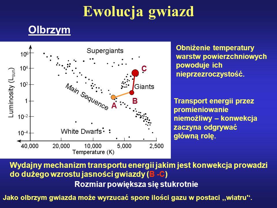 Ewolucja gwiazd Olbrzym Obniżenie temperatury warstw powierzchniowych powoduje ich nieprzezroczystość. Transport energii przez promieniowanie niemożli