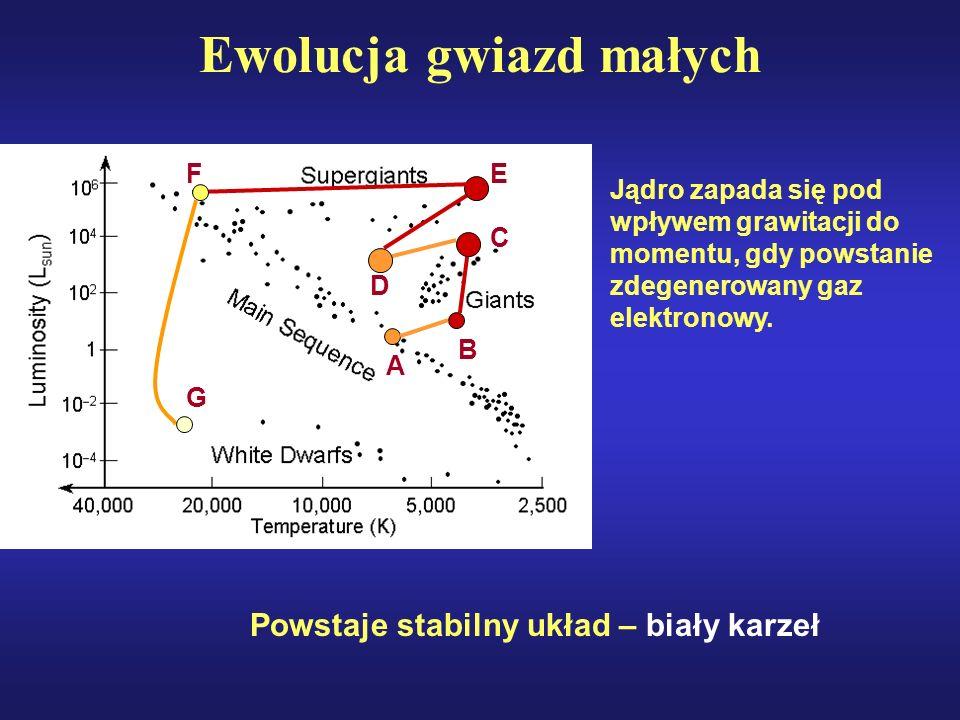 C B D A EF Ewolucja gwiazd małych G Jądro zapada się pod wpływem grawitacji do momentu, gdy powstanie zdegenerowany gaz elektronowy. Powstaje stabilny