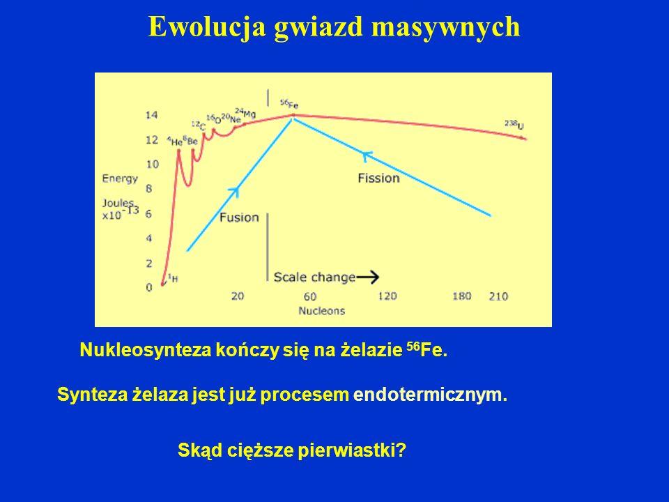 Ewolucja gwiazd masywnych Nukleosynteza kończy się na żelazie 56 Fe. Synteza żelaza jest już procesem endotermicznym. Skąd cięższe pierwiastki?