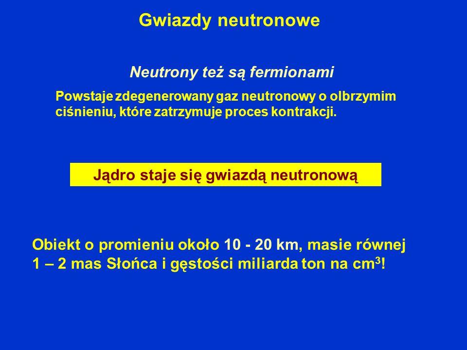 Gwiazdy neutronowe Jądro staje się gwiazdą neutronową Powstaje zdegenerowany gaz neutronowy o olbrzymim ciśnieniu, które zatrzymuje proces kontrakcji.
