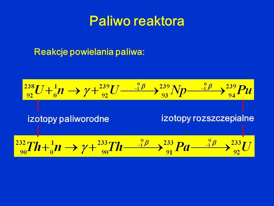 Paliwo reaktora Reakcje powielania paliwa: izotopy paliworodne izotopy rozszczepialne