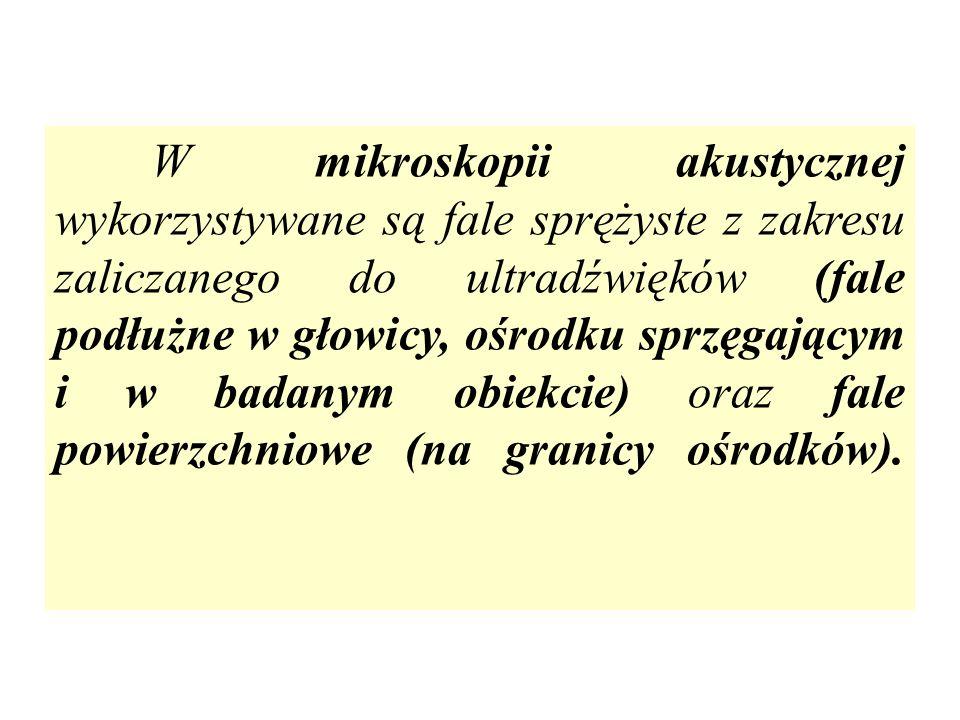 Fragmenty monety z czasów Jana Kazimierza