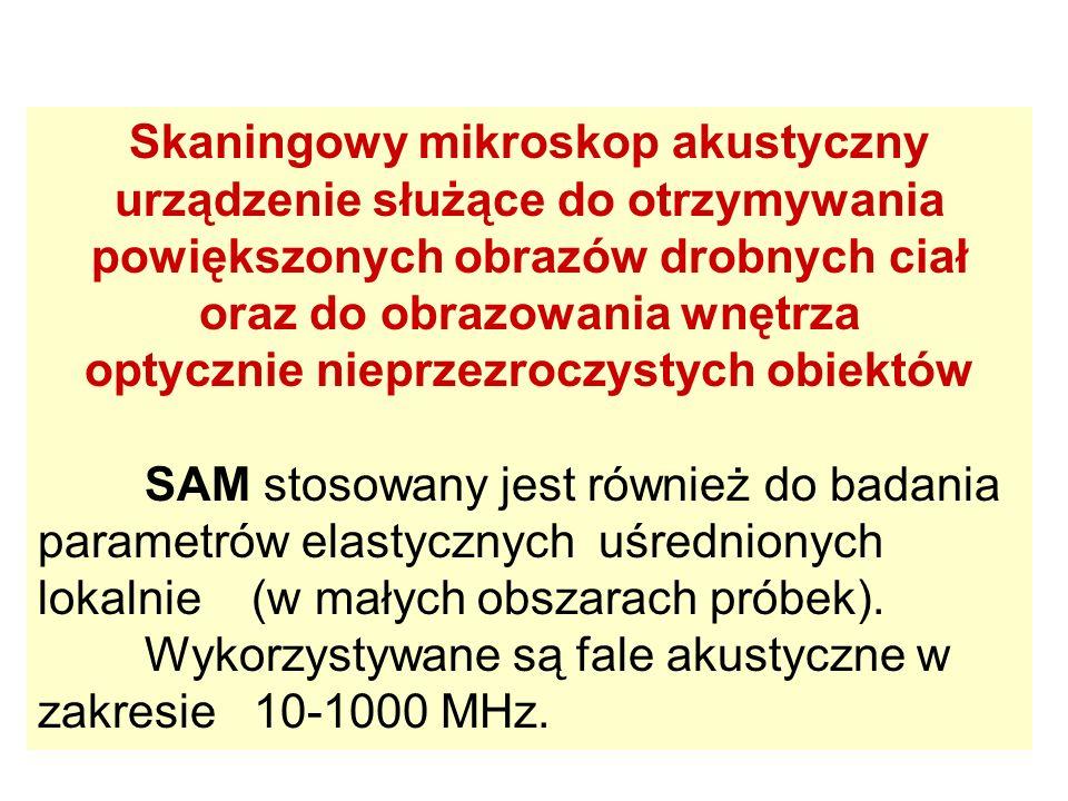 Fragment monety z czasów Jana Kazimierza - głowa orła