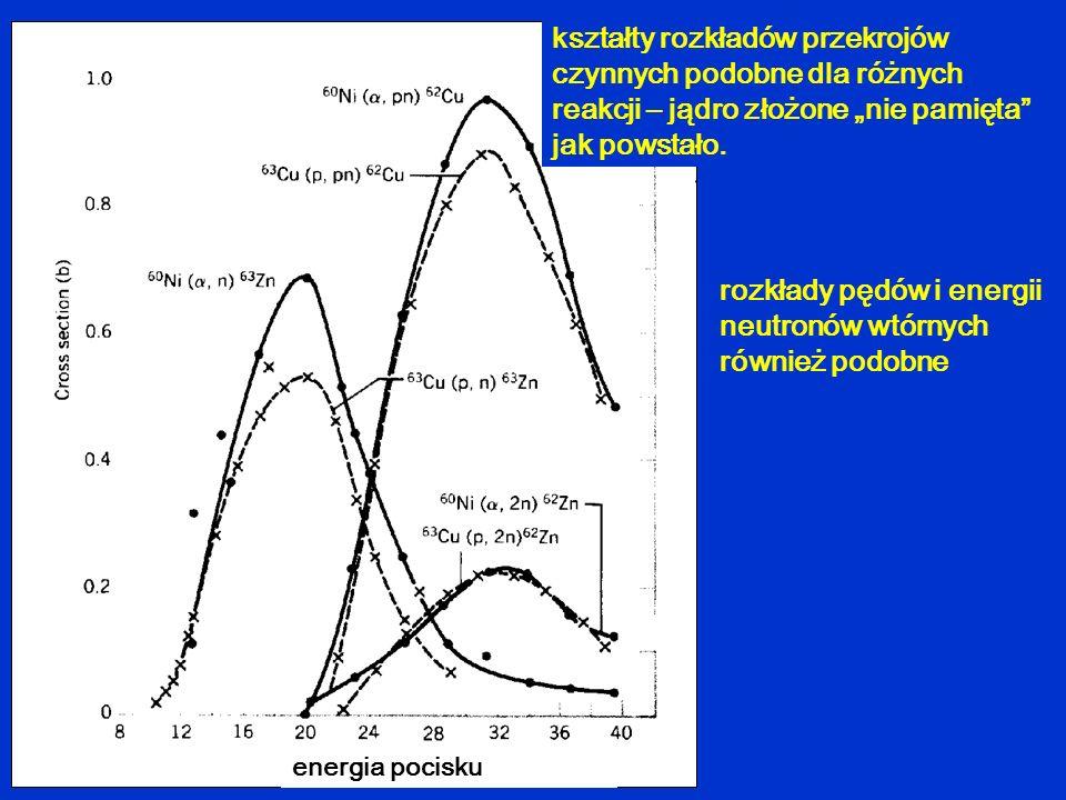 kształty rozkładów przekrojów czynnych podobne dla różnych reakcji – jądro złożone nie pamięta jak powstało. rozkłady pędów i energii neutronów wtórny