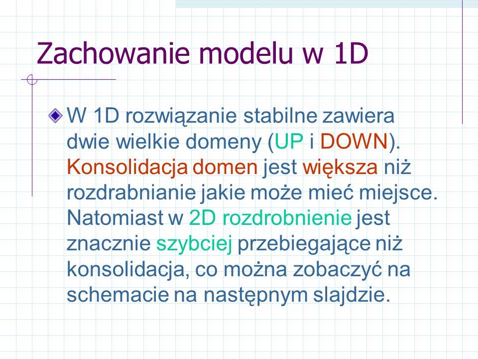 Zachowanie modelu w 1D W 1D rozwiązanie stabilne zawiera dwie wielkie domeny (UP i DOWN). Konsolidacja domen jest większa niż rozdrabnianie jakie może