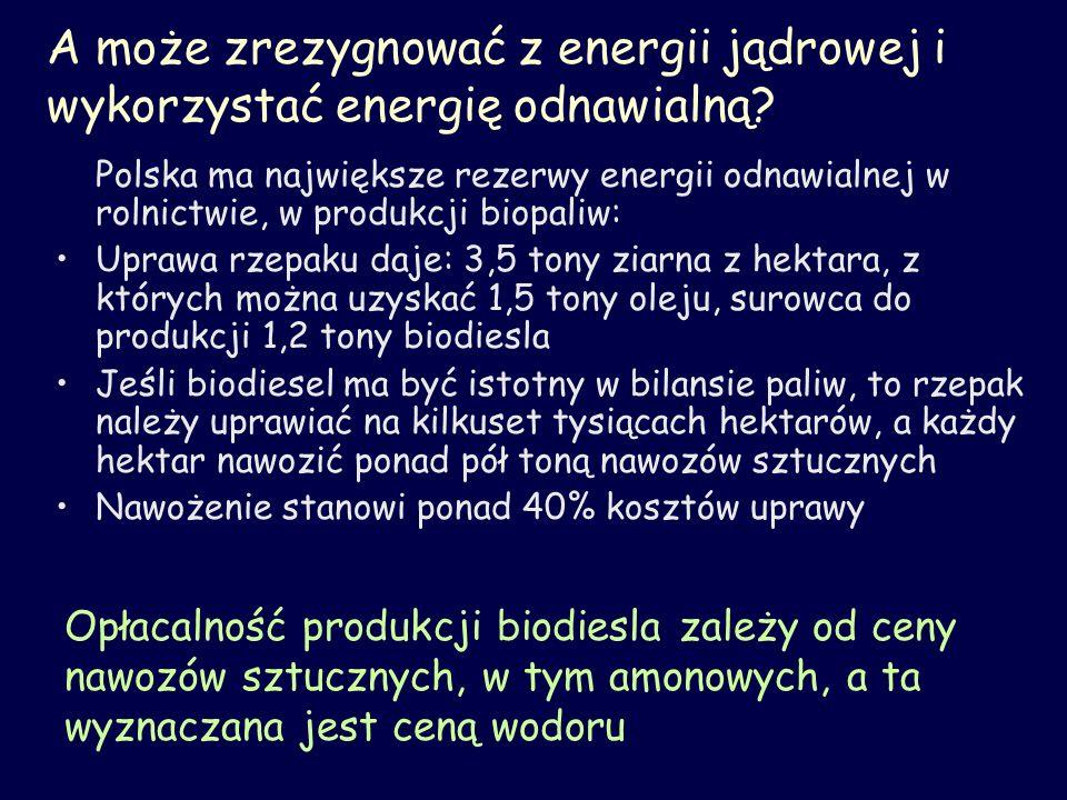 A może zrezygnować z energii jądrowej i wykorzystać energię odnawialną? Polska ma największe rezerwy energii odnawialnej w rolnictwie, w produkcji bio
