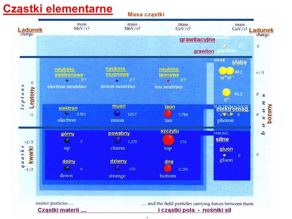 CERN - przed wejściem głównym - flagi państw - członków CERN-u