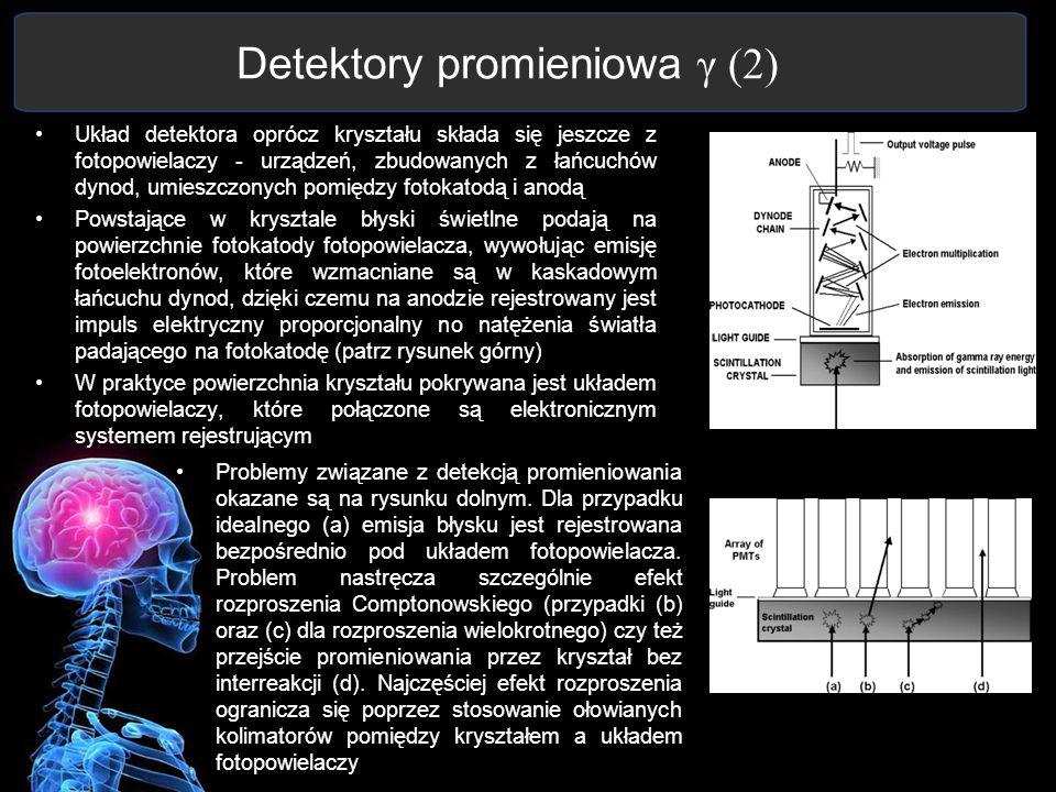Detektory promieniowa γ (2) Układ detektora oprócz kryształu składa się jeszcze z fotopowielaczy - urządzeń, zbudowanych z łańcuchów dynod, umieszczon