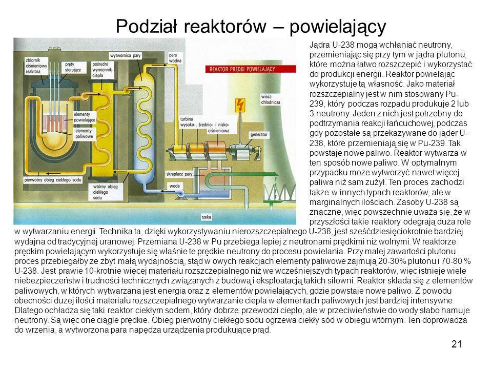 21 Jądra U-238 mogą wchłaniać neutrony, przemieniając się przy tym w jądra plutonu, które można łatwo rozszczepić i wykorzystać do produkcji energii.