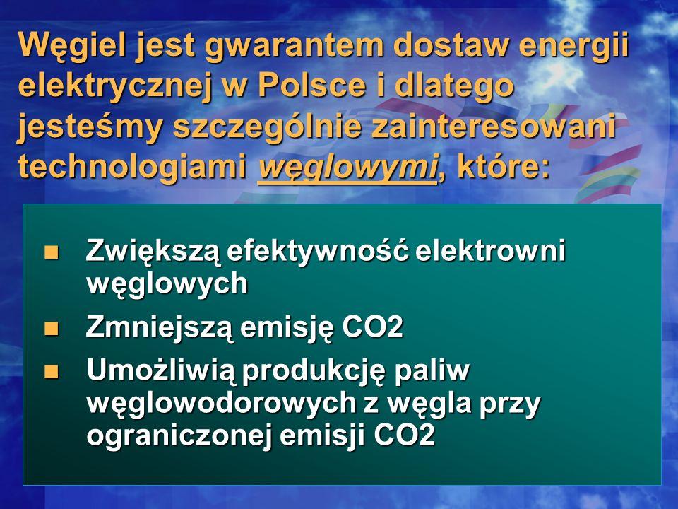 Zwiększą efektywność elektrowni węglowych Zwiększą efektywność elektrowni węglowych Zmniejszą emisję CO2 Zmniejszą emisję CO2 Umożliwią produkcję pali