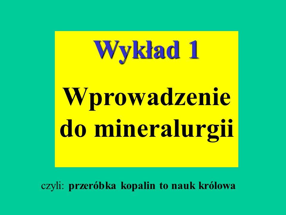Wykład 1 Wprowadzenie do mineralurgii czyli: przeróbka kopalin to nauk królowa