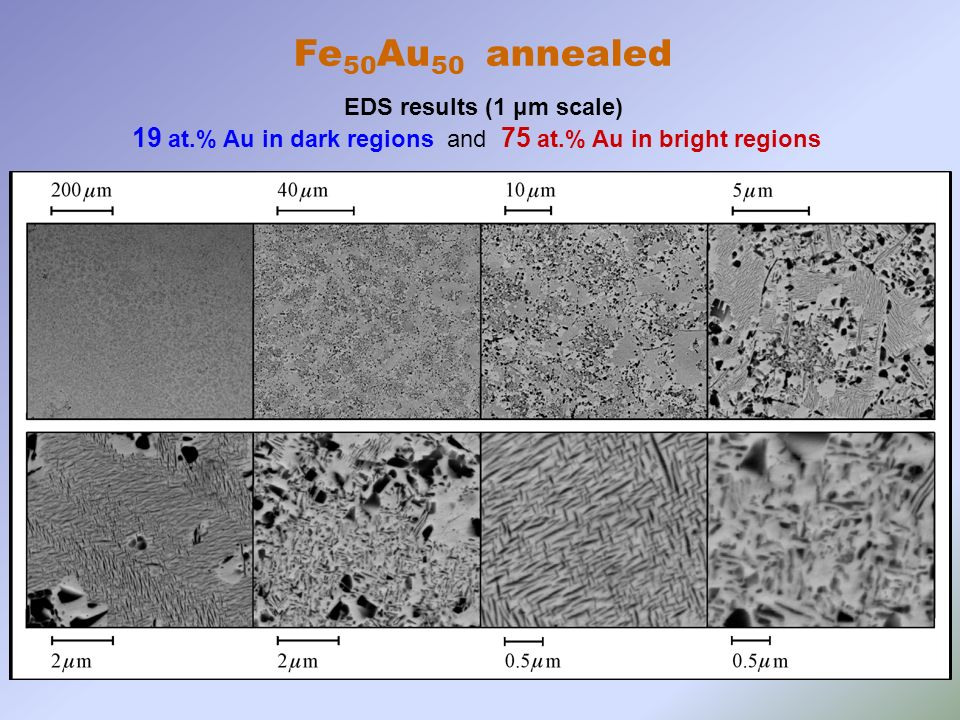 Fe 50 Au 50 annealed EDS results (1 μm scale) 19 at.% Au in dark regions and 75 at.% Au in bright regions
