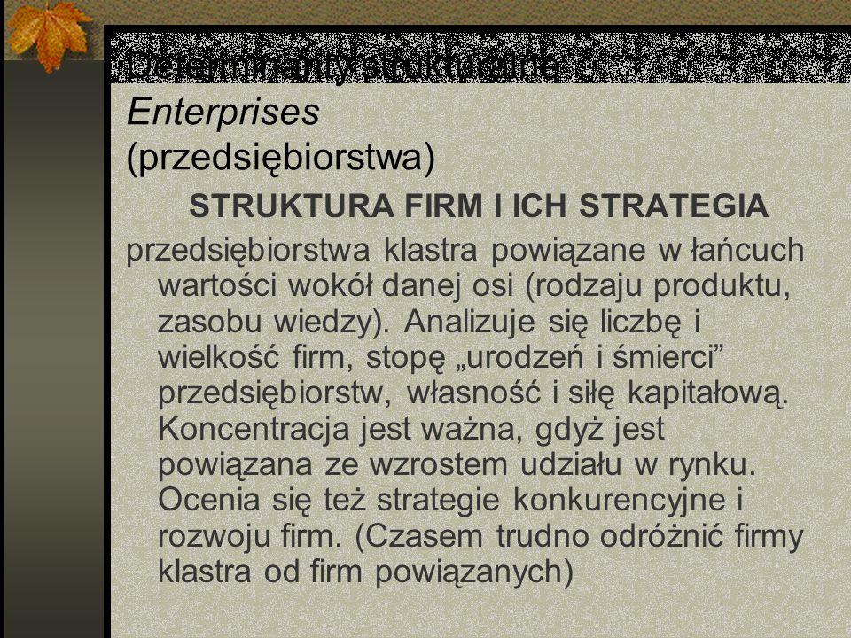Determinanty strukturalne Enterprises (przedsiębiorstwa) STRUKTURA FIRM I ICH STRATEGIA przedsiębiorstwa klastra powiązane w łańcuch wartości wokół danej osi (rodzaju produktu, zasobu wiedzy).