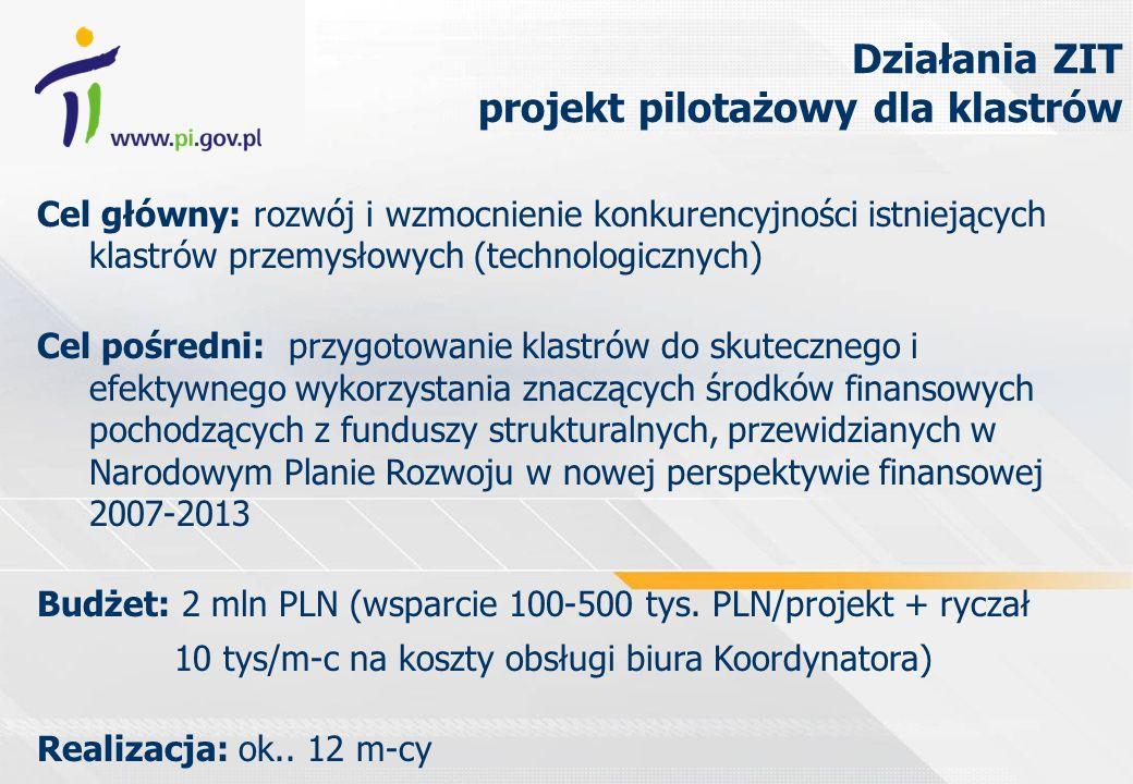 Cel główny: rozwój i wzmocnienie konkurencyjności istniejących klastrów przemysłowych (technologicznych) Cel pośredni: przygotowanie klastrów do skutecznego i efektywnego wykorzystania znaczących środków finansowych pochodzących z funduszy strukturalnych, przewidzianych w Narodowym Planie Rozwoju w nowej perspektywie finansowej 2007-2013 Budżet: 2 mln PLN (wsparcie 100-500 tys.