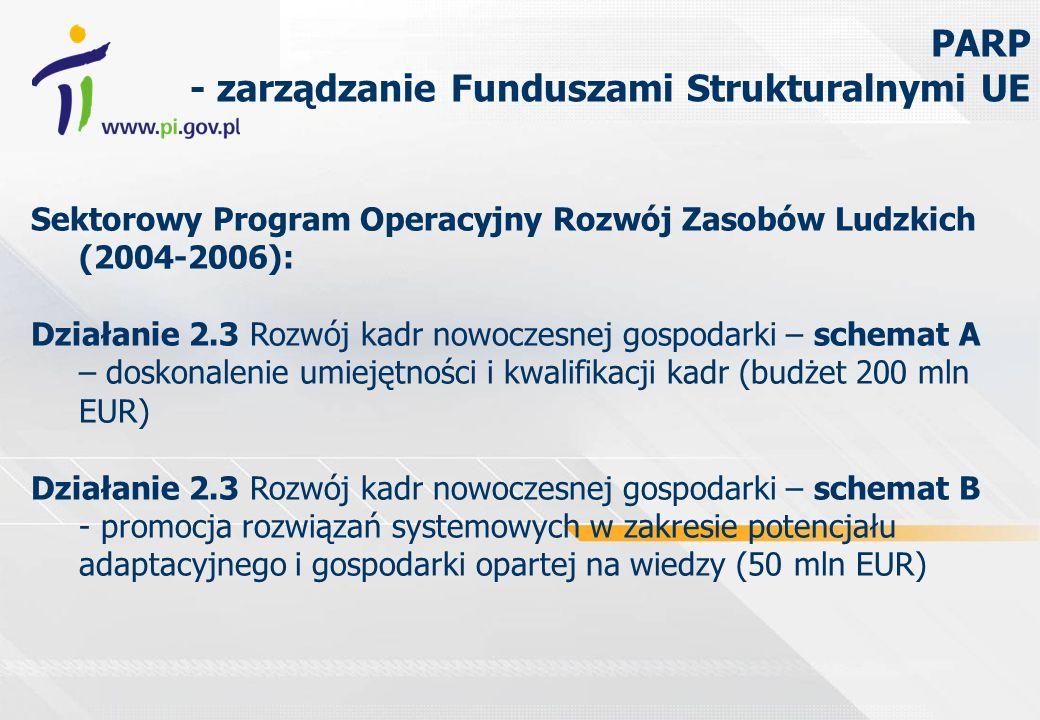 Sektorowy Program Operacyjny Rozwój Zasobów Ludzkich (2004-2006): Działanie 2.3 Rozwój kadr nowoczesnej gospodarki – schemat A – doskonalenie umiejętności i kwalifikacji kadr (budżet 200 mln EUR) Działanie 2.3 Rozwój kadr nowoczesnej gospodarki – schemat B - promocja rozwiązań systemowych w zakresie potencjału adaptacyjnego i gospodarki opartej na wiedzy (50 mln EUR) PARP - zarządzanie Funduszami Strukturalnymi UE
